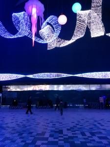 夜の須磨水族園(^O^)