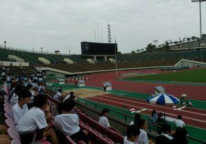 神戸市総体陸上競技一年生100メートル・ベスト16でした(o^^o)